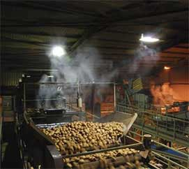 process dust suppression vegetable packing